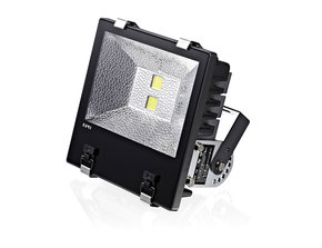 LED Floodlight 100 W