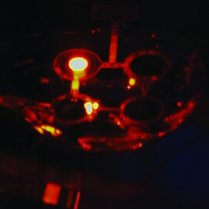 A low-res picture of a working 3D-printed quantum dot LED